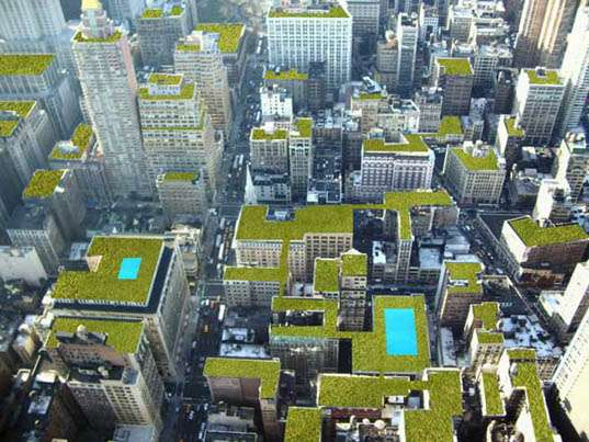 Toronto Green Roof By-law