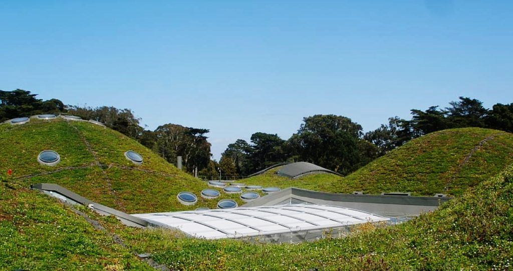 San Francisco's California Academy of Sciences, green roof